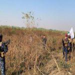 العراق: تدمير مضافة لداعش الارهابي بعملية أمنية شرق سامراء